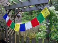 Picture of Tibetan prayer flags, links to larger picture