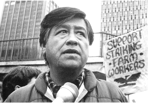 an overview of the farm labor movement by cesar chavez